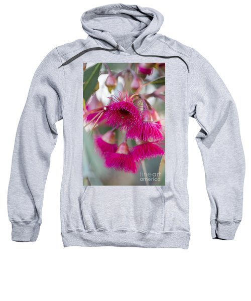 Sweatshirt featuring the photograph Hot Pink by Linda Lees