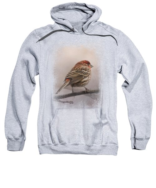 House Finch In January Sweatshirt by Jai Johnson