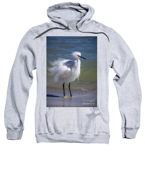 How Do I Look Sweatshirt