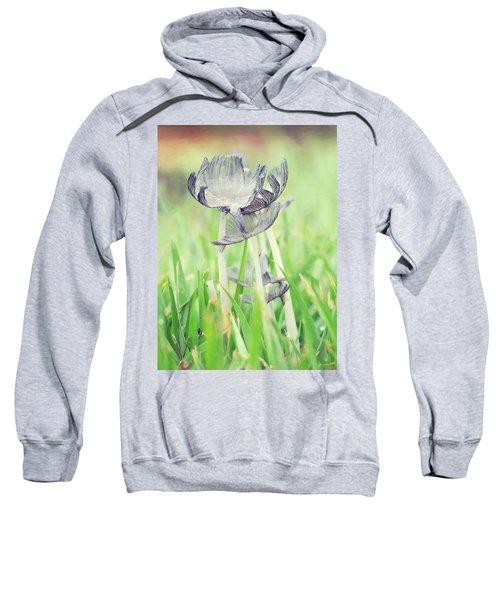 Huddled Sweatshirt