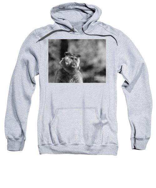 Human Thoughts Sweatshirt