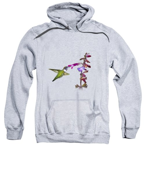 Hummingbird Design Sweatshirt