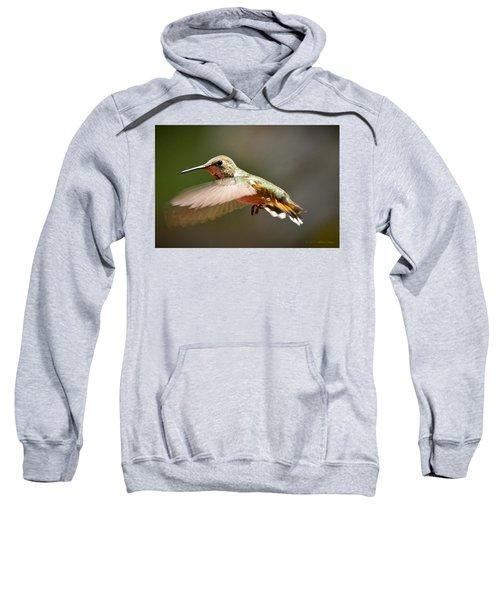 Hummingbird Facing Left Sweatshirt