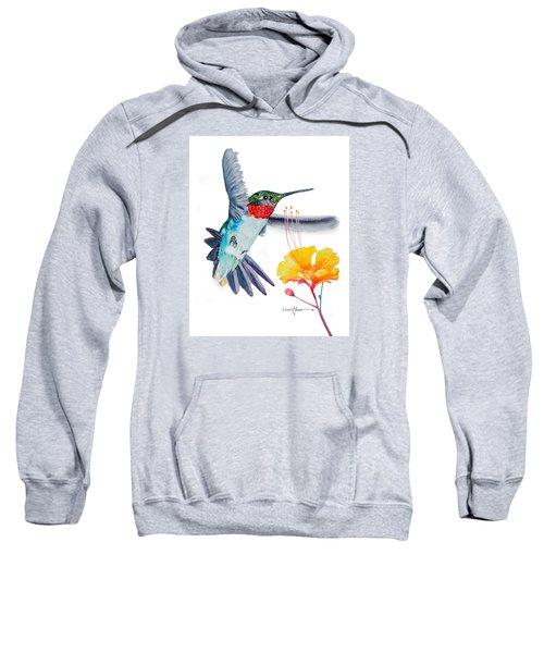 Da169 Hummingbird Flittering Daniel Adams Sweatshirt