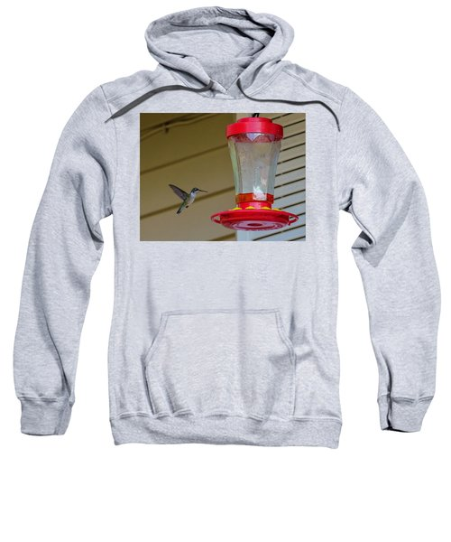 Hummingbird In Flight Sweatshirt