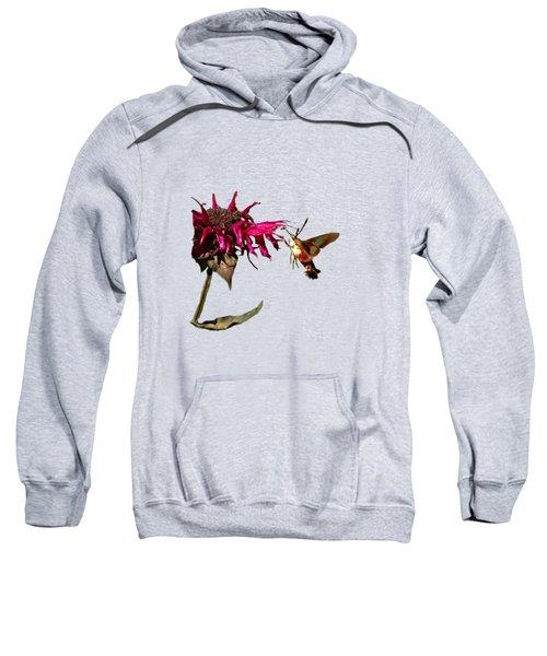 Hummingbird Moth 33 Sweatshirt