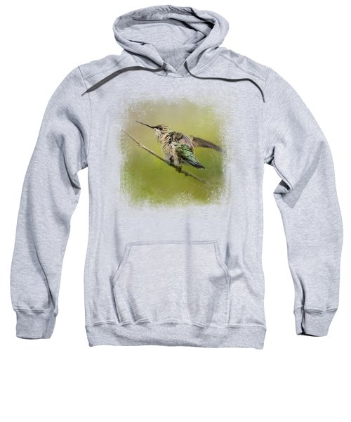 Hummingbird On Lime Sweatshirt