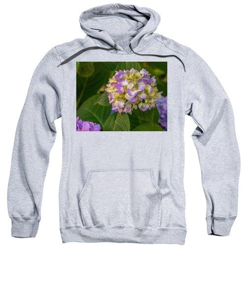 Hydrangea 2 Sweatshirt