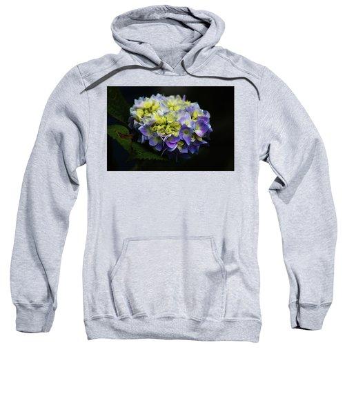 Hydrangea 3705 H_2 Sweatshirt