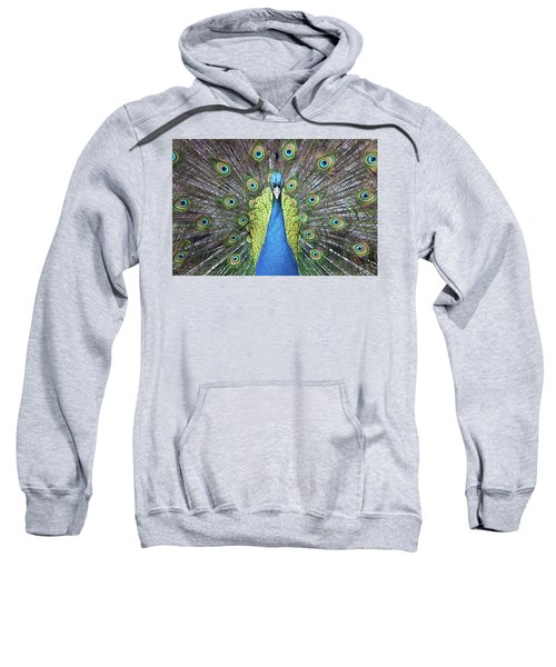 Hypnotic Sweatshirt