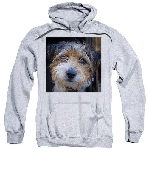 I Can See You Sweatshirt