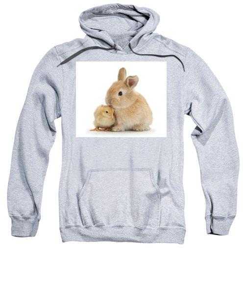I Love To Kiss The Chicks Sweatshirt