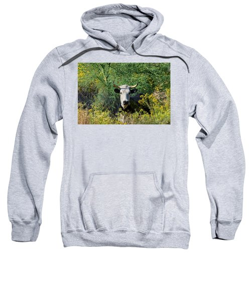 I Picked These For Moo Sweatshirt
