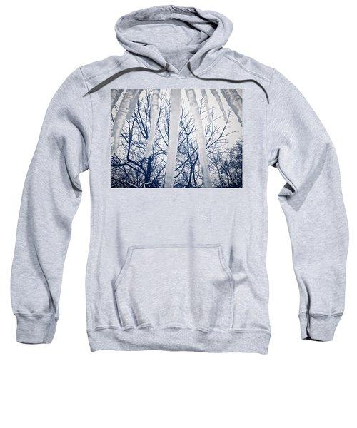 Ice Bars Sweatshirt