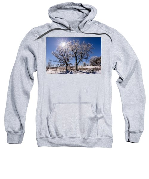 Ice Coated Trees Sweatshirt by Randy Scherkenbach
