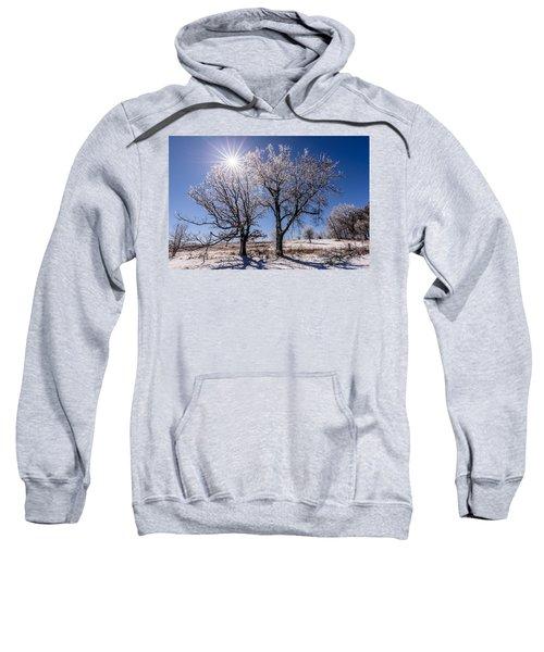Ice Coated Trees Sweatshirt