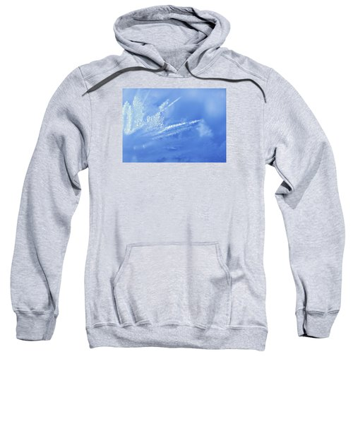 Ice Crystals 2 Sweatshirt