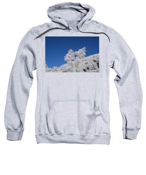 Ice Crystals Ute Pass Cos Co Sweatshirt