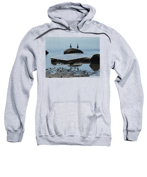 Ice Monolith Sweatshirt