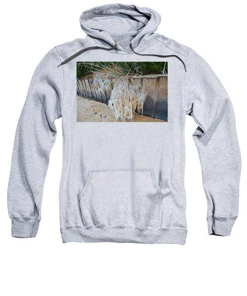 Iced Over Sweatshirt