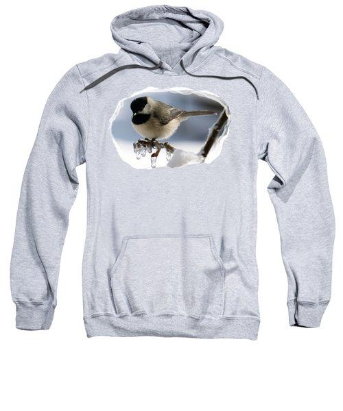 Icicle Perch Sweatshirt