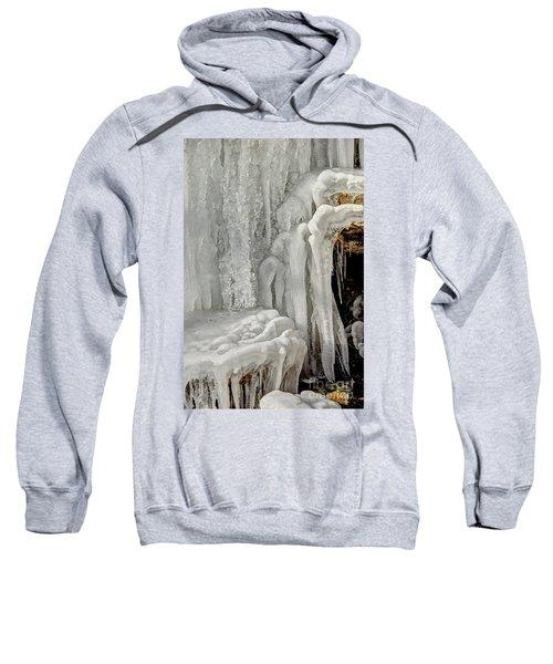 Icy Tendrils Sweatshirt