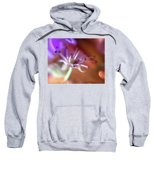 Idora Park Original Concept Art Sweatshirt