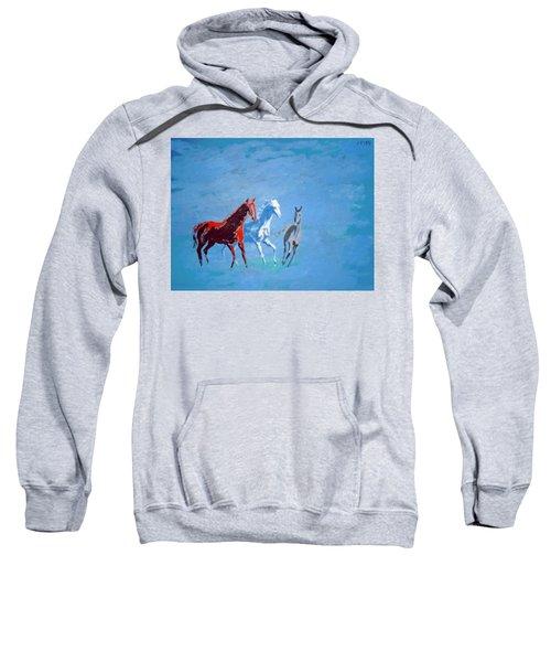 Il Futuro Ci Viene Incontro Sweatshirt