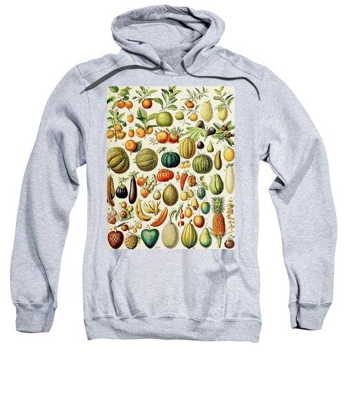 Illustration Of Fruit Sweatshirt