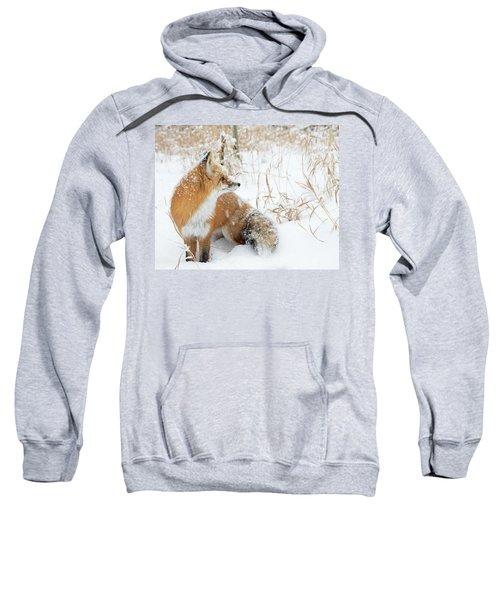 In The Distance #2 Sweatshirt