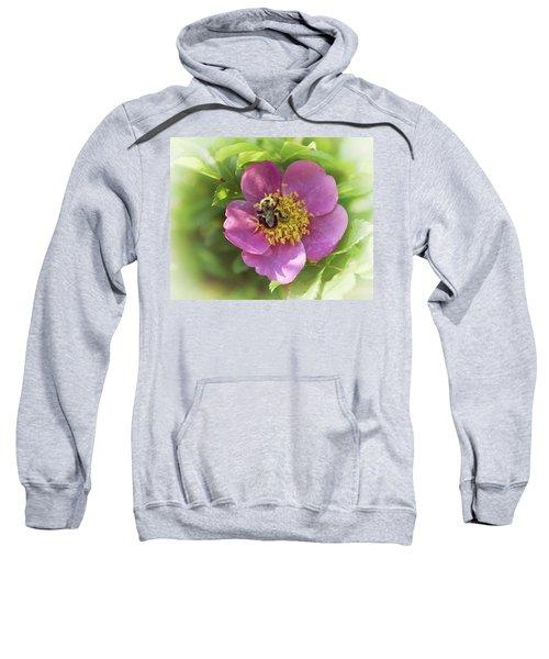In The Wild Rose Patch Sweatshirt