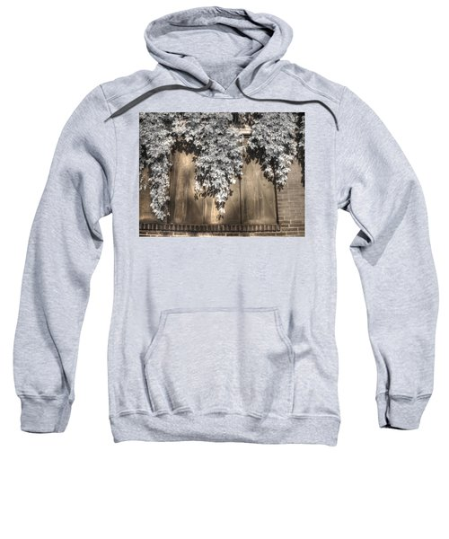 Infrared Botanical Sepia  Sweatshirt