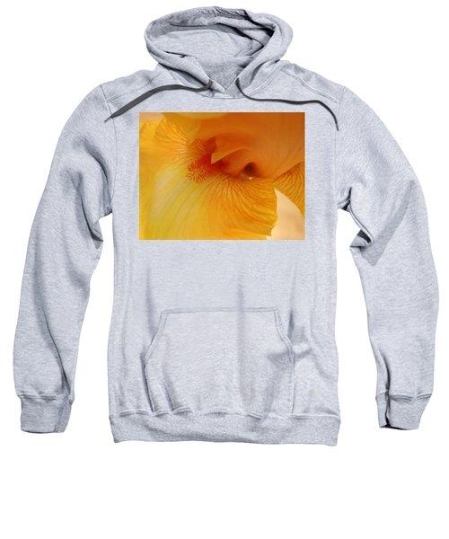Inner Iris, Yellow, Close-up Sweatshirt