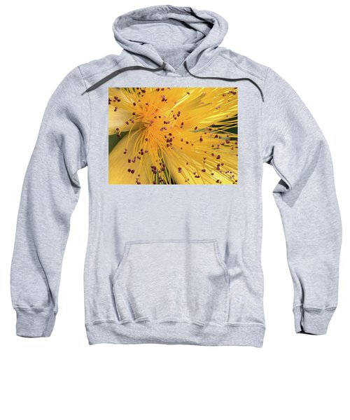 Inside A Flower - Favorite Of The Bees Sweatshirt