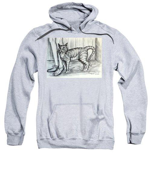 Intrigue  The Cat Sweatshirt