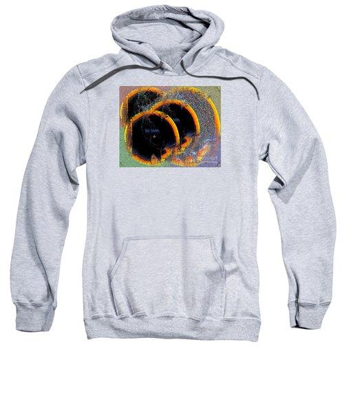 Inw_20a6449_sighted Sweatshirt