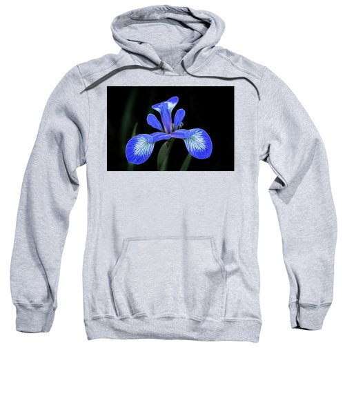 Iris #2 Sweatshirt