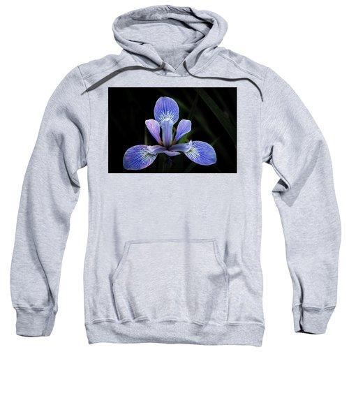 Iris #4 Sweatshirt