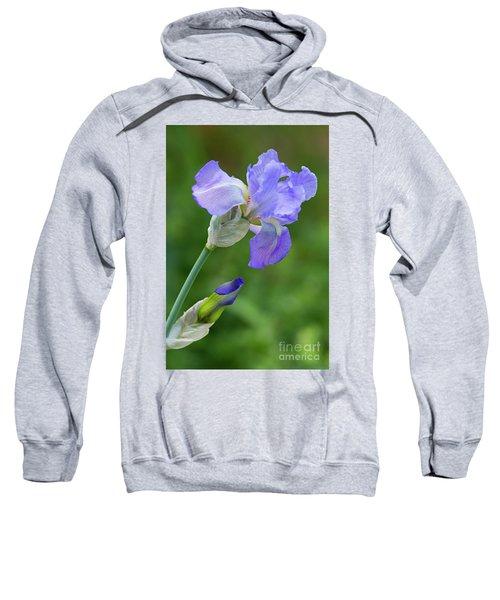 Iris Blue Sweatshirt