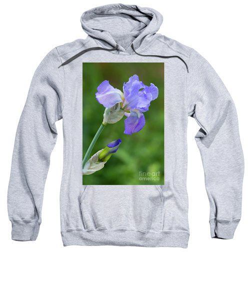 Iris Blue Sweatshirt