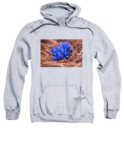 Irises Sweatshirt by Konstantin Sevostyanov