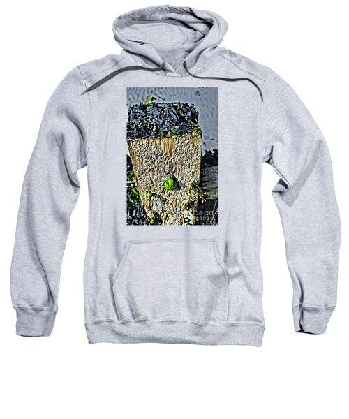 Isle Of Man Low Tide Sweatshirt