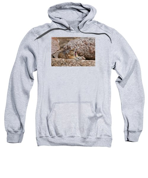 Sweatshirt featuring the photograph It's Been A Long Day by Gary Lengyel