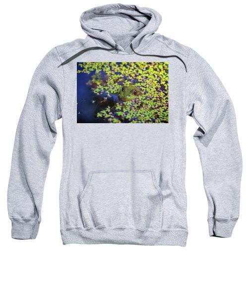 It's Not Easy Being Green Sweatshirt
