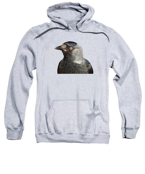 Jackdaw Corvus Monedula Bird Portrait Vector Sweatshirt