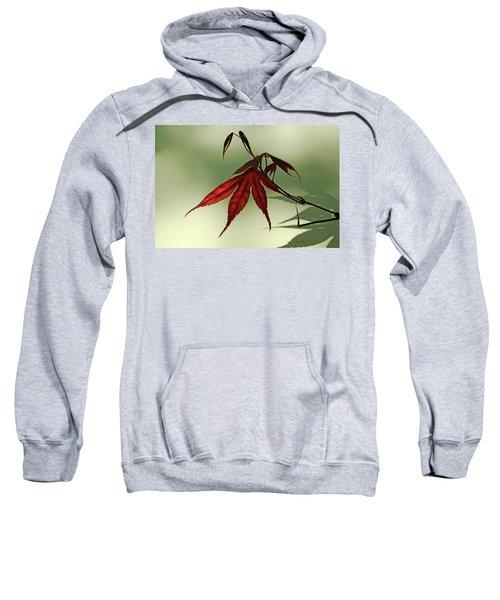 Japanese Maple Leaf Sweatshirt