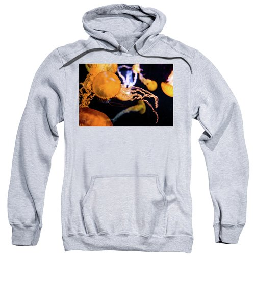 Jelly Storm Sweatshirt