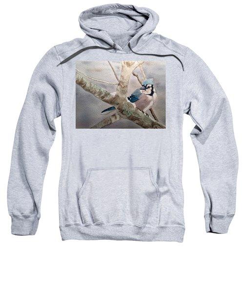 Cold Winter's Jay Sweatshirt
