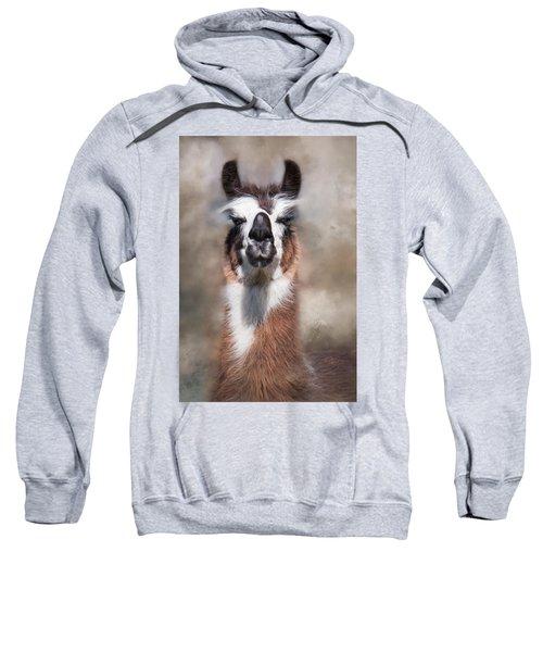 Jolly Llama Sweatshirt