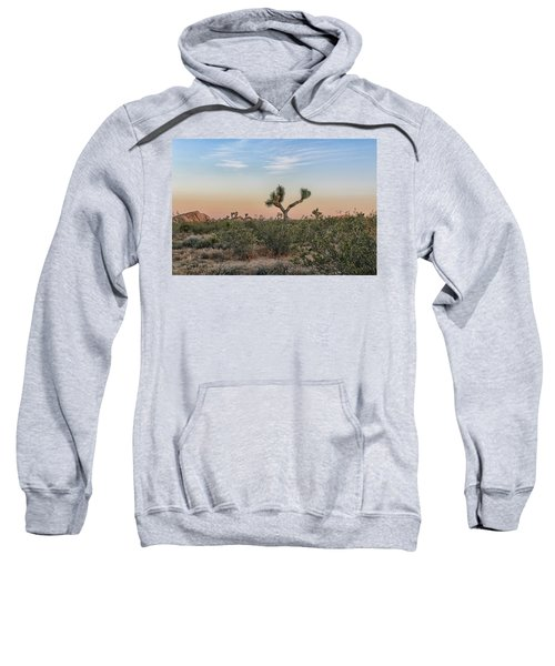 Joshua Tree Evening Sweatshirt